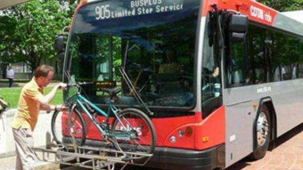 Transit Pedestrian Safety Improvement